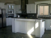 SAVE LOTS OF MONEY PAINT YOUR CABINETS DONT REPLACE