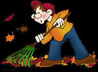 Fall clean up,hedges.shrubs and much more