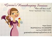 **Domestic Cleaning and Ironing Services**