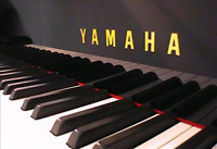 Piano Lessons in the Cole Harbour area.
