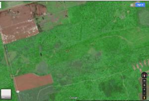 Farm Land for Sale In Souris PEI Area