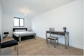 Modern Spacious Two Bedroom Apartment