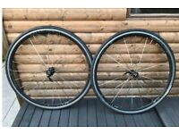 Team vision 30 9/10/11 speed wheelset with tyres