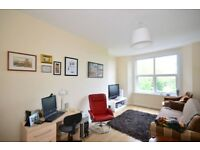 2 bed PERIOD CONVERSION, LAMINATE FLOORS, MODERN DECOR, PERIOD FEATURES, ON A TREE LINED ST