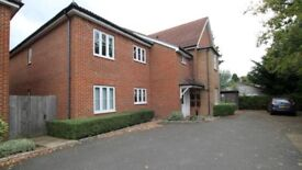 2 BEDROOM FLAT TO RENT IN NEWHAW