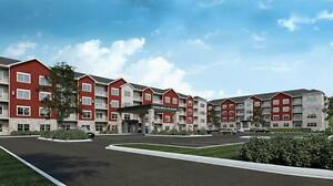 Huge Selection of Quality Apartments in St. John's! $695 and up!