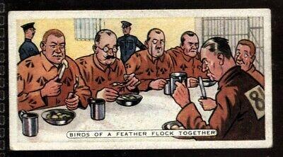 Tobacco Card, Ardath, PROVERBS, 1936, Birds of a Feather Flock Together, (Birds Of A Feather Flock Together Proverb)