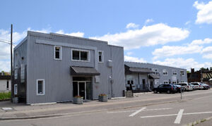 Open Office Space - Short Term Leases Available