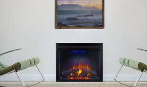 Napoleon Electric Fireplace with Heater