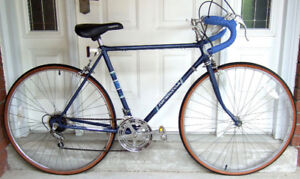 Blue  SuperCycle 10-Speed For Sale