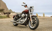 2014 883 sportster superlow like new only 176 km