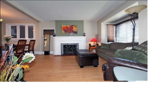 Cozy East York detached house for rental