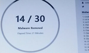 Malware & Virus Removal Service