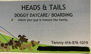 Heads & Tails Doggy Daycare & Boarding Services