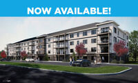 1-2 bedroom Apartments available with APM Rent Grant available