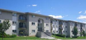 520 Parkside Drive - Two Bedroom Apartment Apartment for Rent Kitchener / Waterloo Kitchener Area image 1