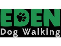 Part-time Dog Walkers wanted!