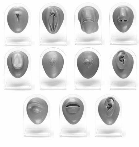 Complete 11 Piece Silicone Display Set - Version 1 Black Body Bits
