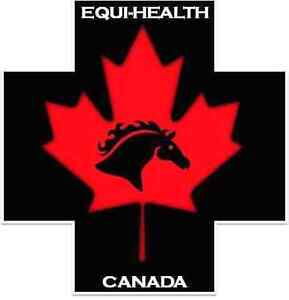 Equine First Aid Course In Clifford Ont Sat Oct 1 Stratford Kitchener Area image 2