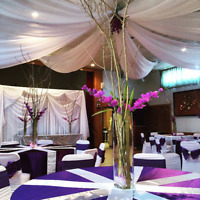Wedding Decoration package $5.50 per person (includes all decor)