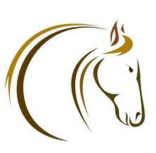 Accredited Equine Reiki Courses Rainbow Flat Greater Taree Area Preview