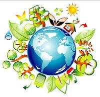 EARTHLY ESSENCE CLEANING SERVICE (environmentally friendly)