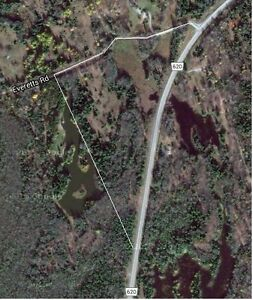 40 acres, prime land for development, build your dream retreat.