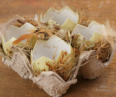Just Hatched Eggs in Carton ~ Feathers & Grass ~ Easter Decor