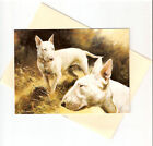 English Bull Terrier Collectibles