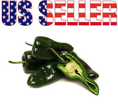 Mexican Pepper - 30+ ORGANICALLY GROWN Ancho Poblano Hot Pepper Seeds Mexican Heirloom NON-GMO US