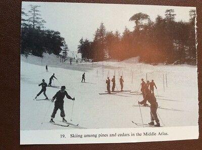 b1H ephemera picture 1965 skiing on the atlas mountains