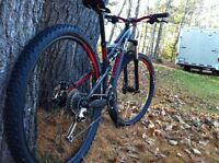 Specialized Camber S 2014