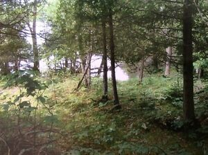 Lot 1 Sharbot Lake, 4.7 Acres