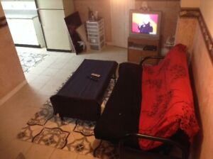Gorgeous furnished one bedroom basement apartment in Brampton