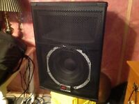 """DJ Music Set of 2 Peavey Speakers 15"""" Sound and look new BASS!"""
