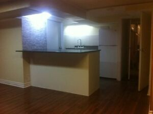 1 BACHELOR BASEMENT APARTMENT IN JUNCTION AREA