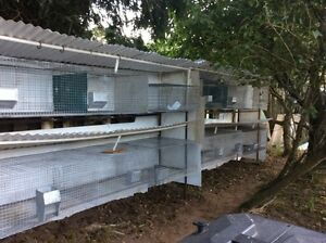 2 Banks of Rabbit Cages/Hutches, No Rust on Cages! J Feeders