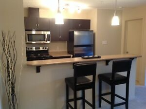 Open concept, 2 bedroom 2 full bathroom North Edmonton