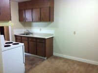 Upgraded/Clean 2Br w/Pet OK & MI Special! (South)