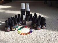 Chroma professional gel nail set
