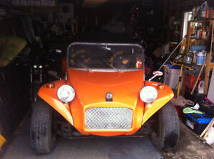 Dunne buggy beetle  4 place possible Echange