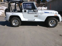 1994 Jeep Other chrome Cabriolet