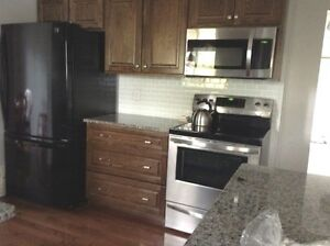 Parsons Cabinets / Kitchen Cabinets, Refacing,Remodelling Windsor Region Ontario image 10