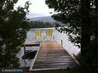 Lakefront Cottage in the heart of the Laurentians