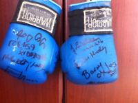 autographed boxing gloves signed by local sportsmen. Great local memorabilia