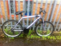 Mountain bike for sale ready to ride away. Free lock with key and front light.