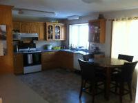 Main Floor for rent, 1200 sq ft, $1600 INCLUDING utilities!