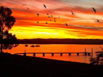 Lakeview Room to Rent in Bonnells Bay! Bonnells Bay Lake Macquarie Area Preview