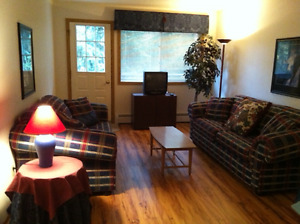 No longer Available - 2 Bedroom Condo in Sparwood BC