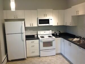Beautiful 4 bdr Apartment! 8 month lease perfect for students!